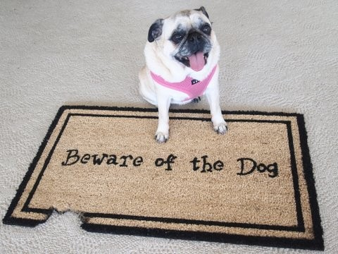 Kempf Beware of The Dog Doormat
