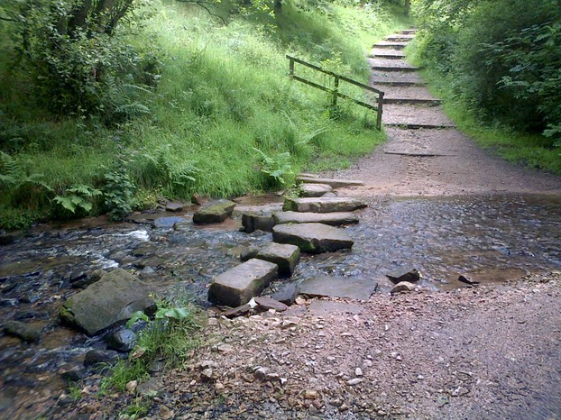 Stepping stones in the Macc Forest
