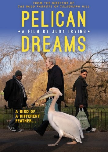 Pelican Dreams DVD