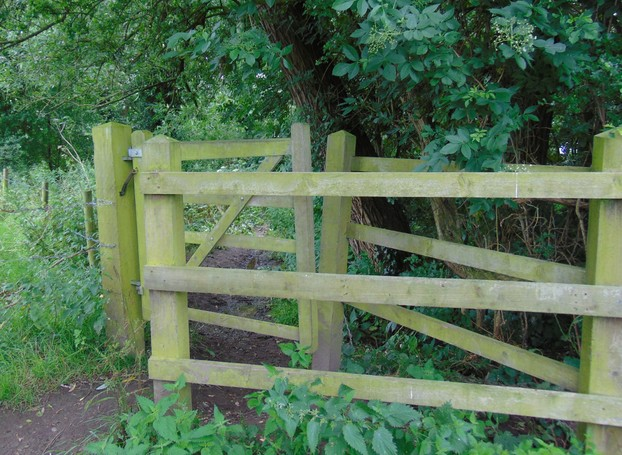typical Cheshire woodland  gate