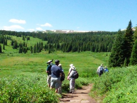 Birding on Vail Pass Trail