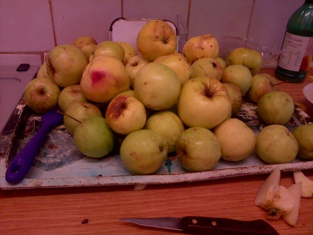 Just some of the apple mountain