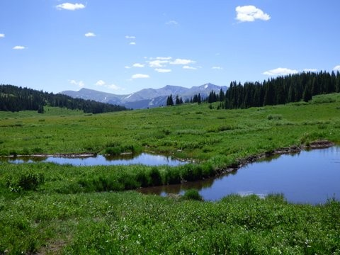 Vail Pass Landscape with Beaver Ponds