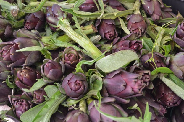 Purple artichokes, enjoyed in Venice during the early summer.