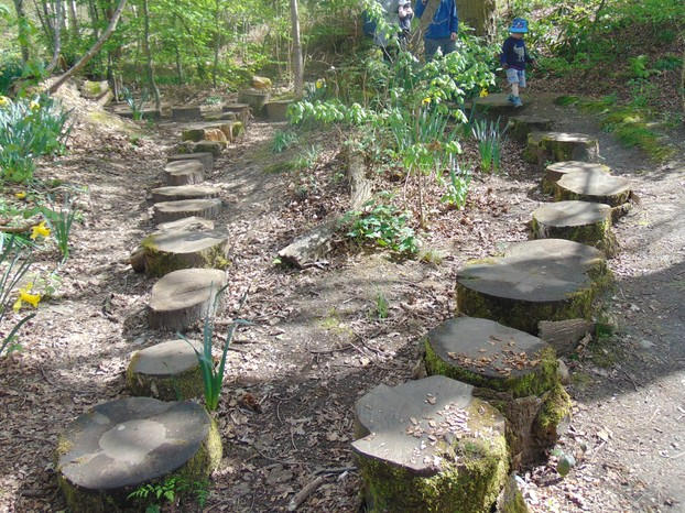 Stepping stones in the woodland walk
