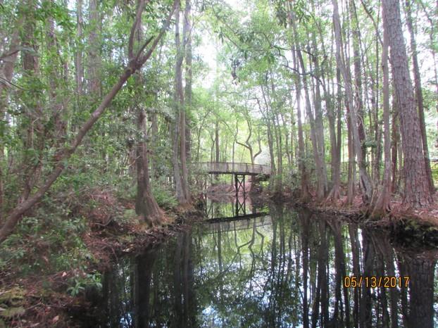 Okefenokee Swamp Park Okefenokee Swamp Park,...