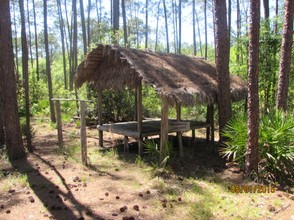 An example of a Seminole home in the Okefenokee.