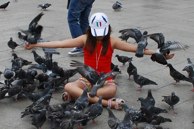 girl feeding wild pigeons in Piazza San Marco, Sept. 12, 2009
