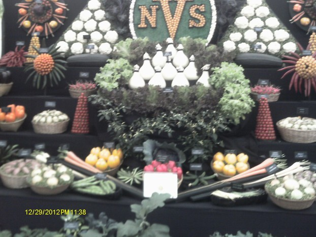 The NVS stall