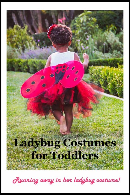 Ladybug Costumes for Toddlers - Please Pin!