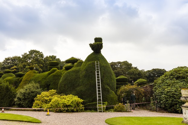 A Topiary Sculpture