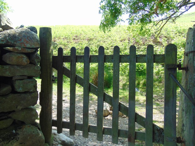 The farm gate