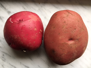 Fresh and Store Bought Potatoes