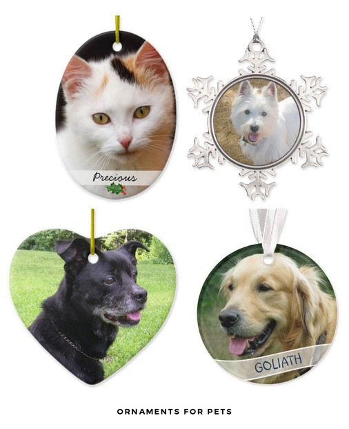 Keepsakes For the Family Pet