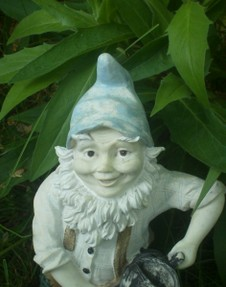 gnomes still care for my gardens
