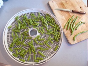 Preparing Green Beans for Drying