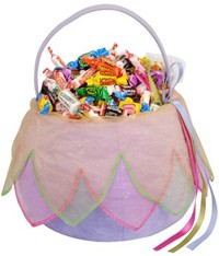 Fairy Trick or Treat Basket