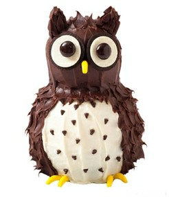 Amazing Owl Birthday Cake Cupcake Ideas Personalised Birthday Cards Cominlily Jamesorg