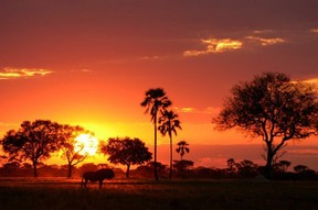 Sunset over Wankie (Whangwe) Zimbabwe