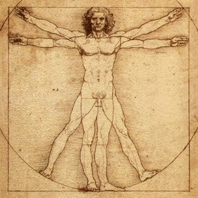 Image: The Vitruvian Man