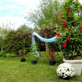 Cheap Backyard Wedding Decorations