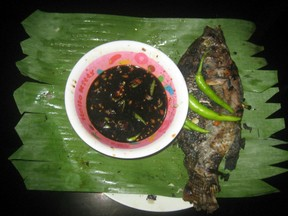 Grilled Tilapia with Soya mixture