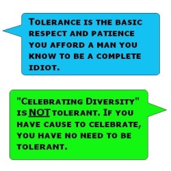 Meaning of Tolerance and Diversity