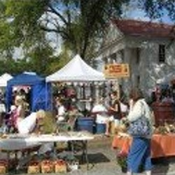 Pendleton Fall Harvest Festival