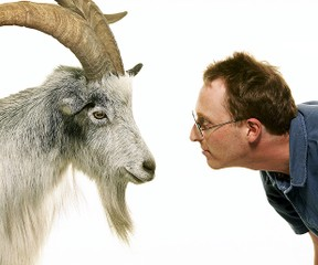 Image: Jon Ronson and goat