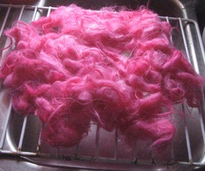 Drying Dyed Wool