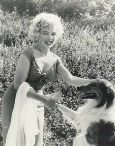 Marylin and Lassie Shake Hands