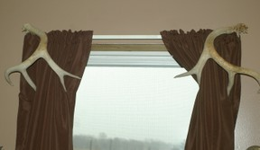 deer antler sheds used to hold back curtains