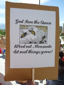Photo Credit: enslavedbyfaeries // this is the sign that I held at the March Against Monsanto on 5.25.2013