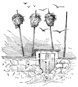 Heads on spikes, London Bridge
