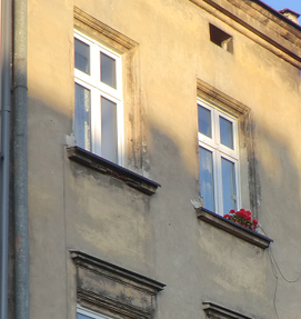 Image: Red flowers in Kazimierz