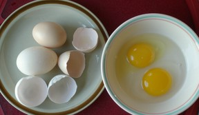 chicken egg and duck egg