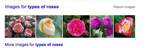 types of roses (search on Google)