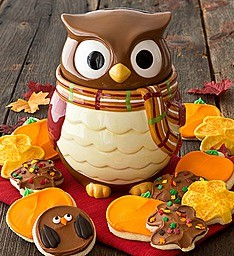 Owl Cookie jar and cookies