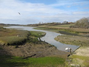 The hamlet is surrounded by shallow tributaries flowing north to the sea