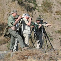 Birding Expedition
