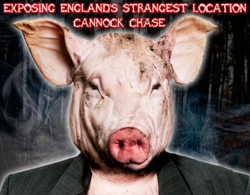 Man Cave Cannock : Pig man: the half human hybrid running around cannock chase